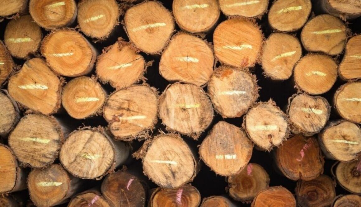A wood foundation.